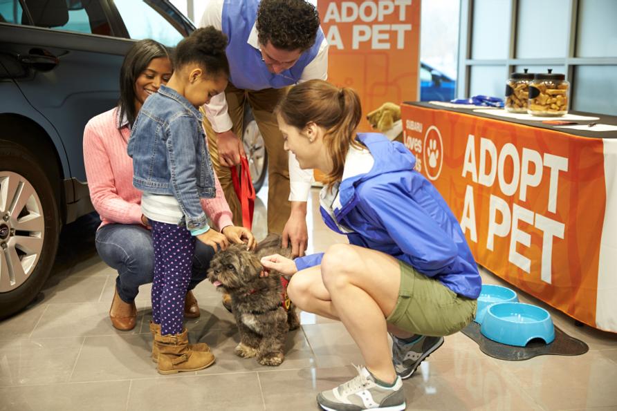 Subaru-Loves-Pets-Family-with-Small-Dog
